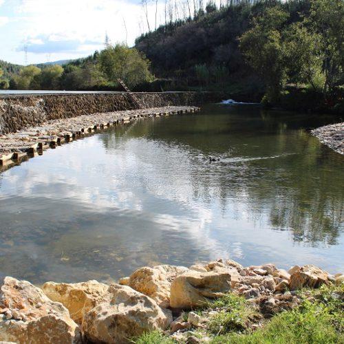 Município de Penacova realiza intervenção de regularização fluvial nos rios Alva e Mondego