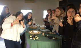 Agrupamento de Escolas de Oliveira do Hospital promoveu intercâmbio com Rozenberg School (com vídeo)