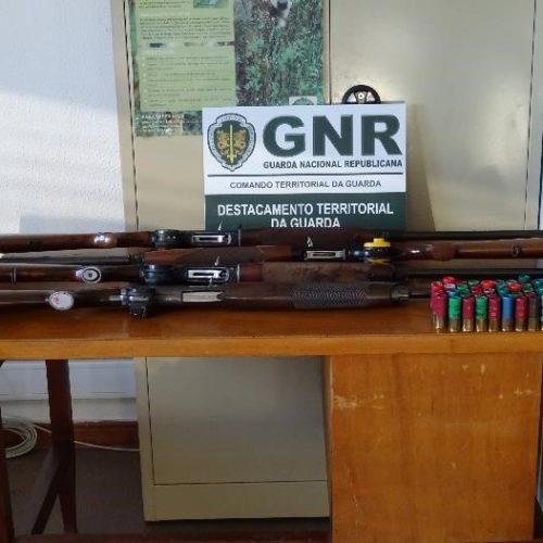 Celorico da Beira: Cinco homens identificados por caça ilegal ao javali