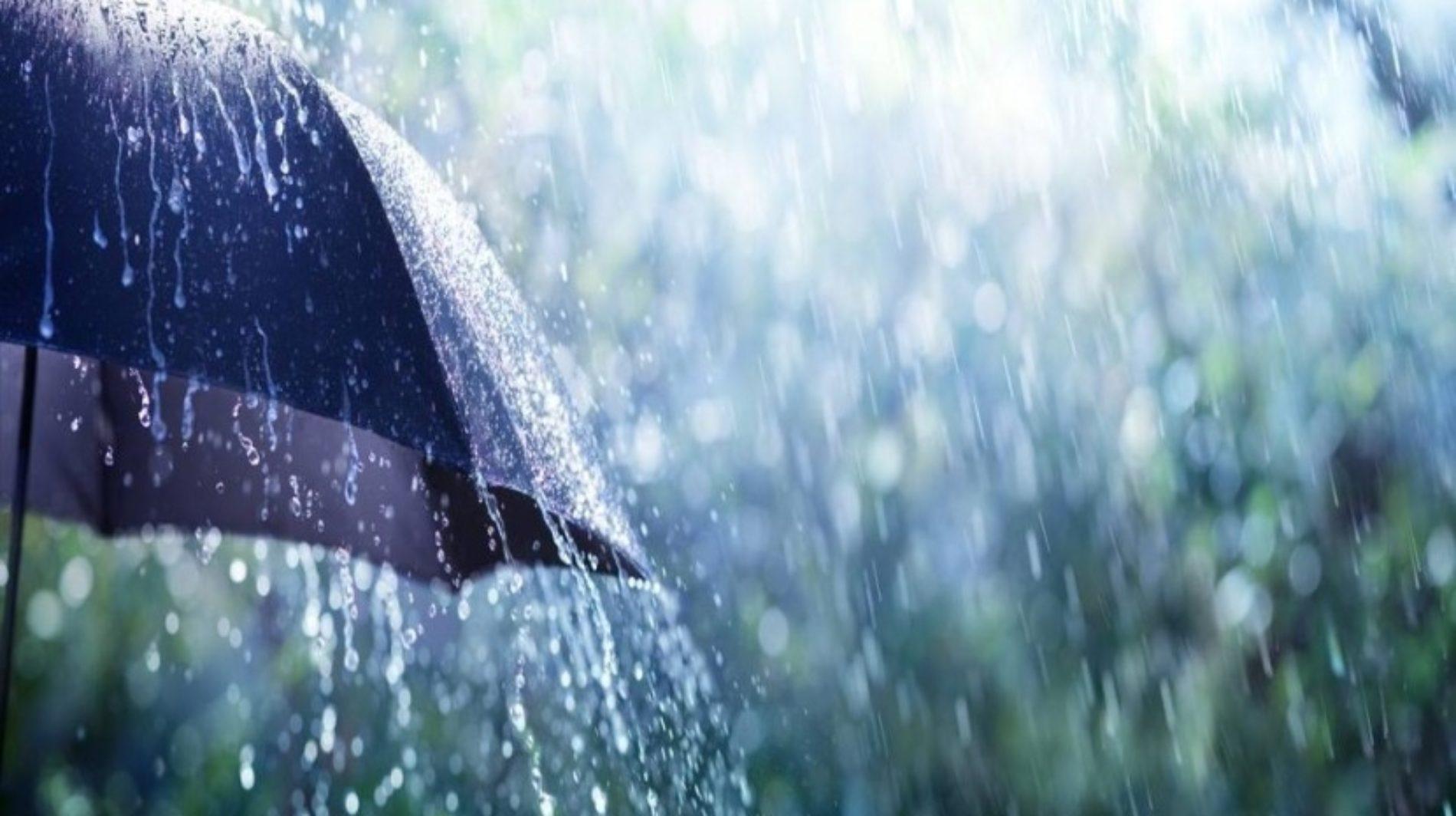Vários distritos sob aviso amarelo devido à chuva e vento forte