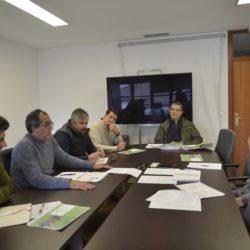 CIM Região de Coimbra constitui grupo de trabalho para monitorização da Vespa Velutina