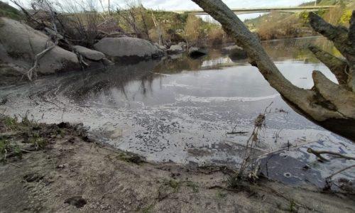 Carregal do Sal: Núcleo Concelhio do BE denuncia poluição no rio Dão