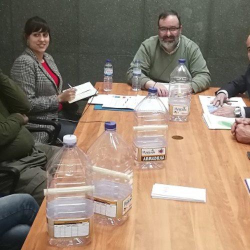 Penacova: Município instala 400 armadilhas para Vespa Velutina