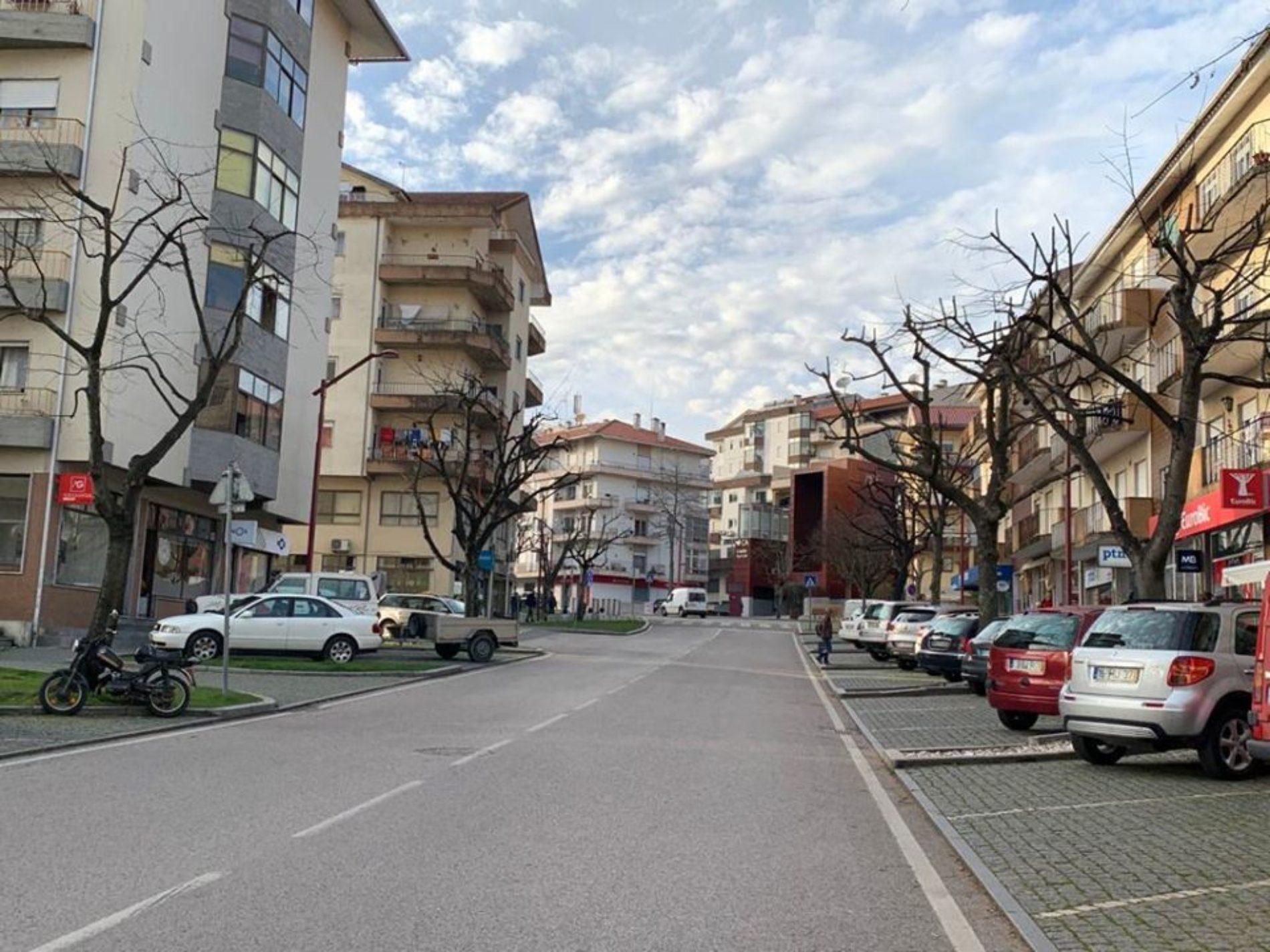 Concluídos trabalhos de podas de árvores na cidade de Oliveira do Hospital