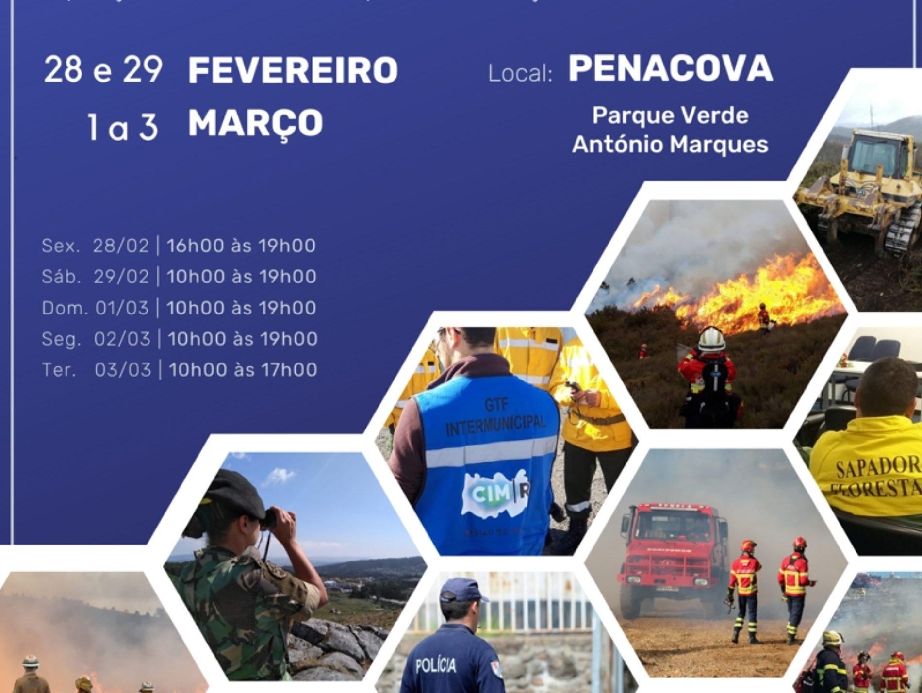 Região de Coimbra celebra Dia Mundial da Proteção Civil com diversas atividades
