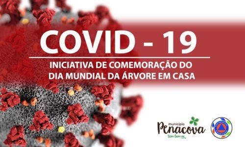 Município de Penacova lançou iniciativa de Comemoração do Dia Mundial da Árvore em Casa