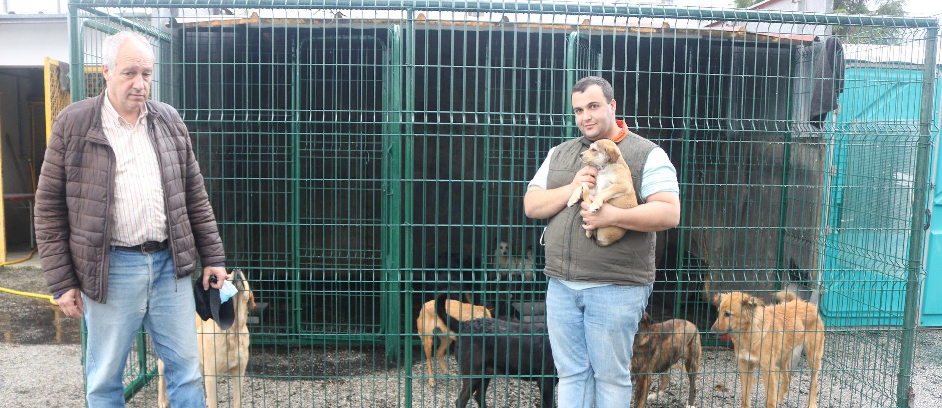 """""""O número de animais abandonados supera o número de adoções"""""""