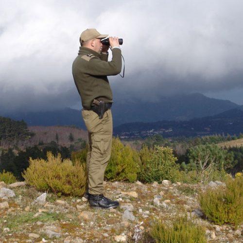 CIM Viseu Dão Lafões e CIM Região de Coimbra lançam procedimento para a aquisição de um sistema de videovigilância florestal