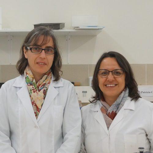 Investigadores da UC utilizam resíduos do fruto da nogueira para o combate a nemátodes parasitas de plantas