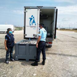 Aveiro: GNR apreende 1 750 quilos de sardinha e 211 quilos deamêijoa