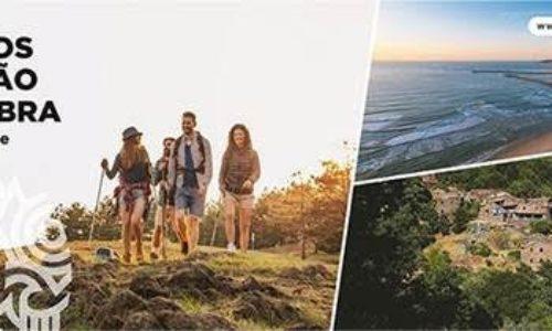 CIM Região de Coimbra propõe ao Governo novos incentivos para o Turismo