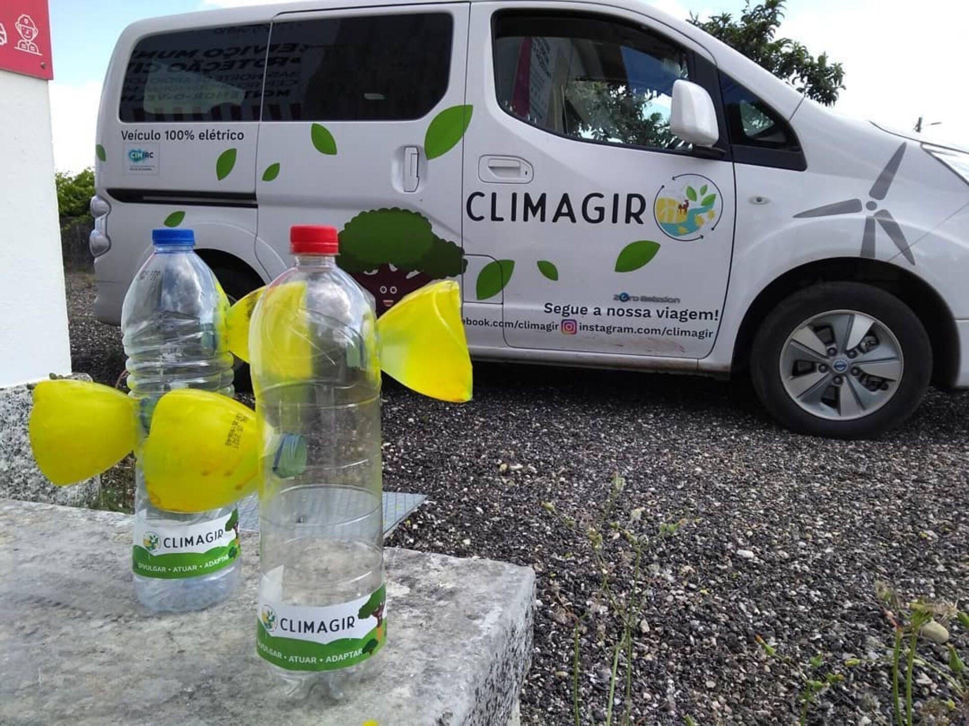 CIM Região de Coimbra intensifica projeto de controlo à vespa asiática