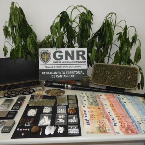 Cinco detidos por tráfico de estupefacientes em Cantanhede
