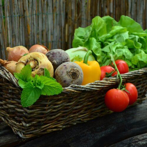 Município de Nelas entregou 1359 cabazes alimentares a famílias mais carenciadas