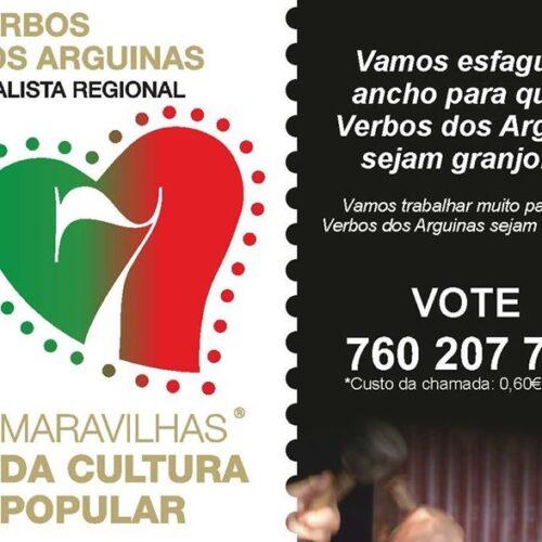 """7 Maravilhas: Município de Oliveira do Hospital apela à votação nos """"Verbos dos Arguinas"""""""